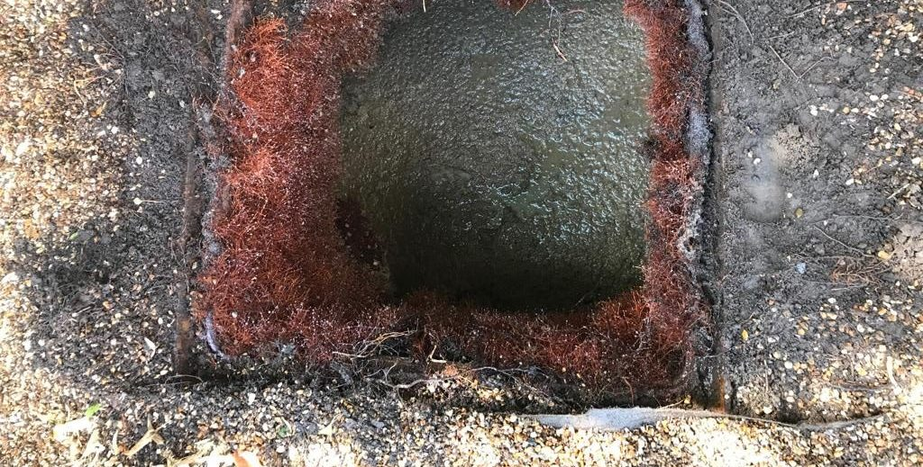 Badly blocked manhole filled with roots that need removal.