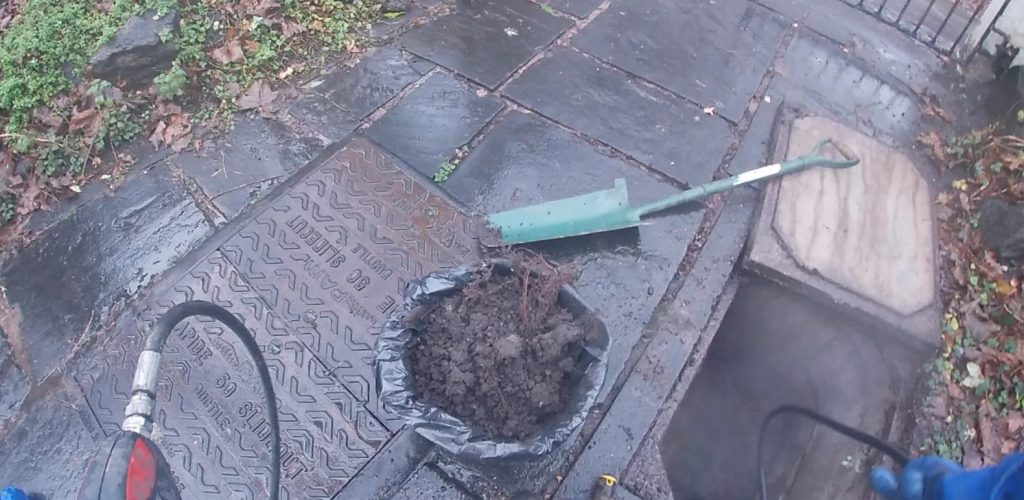 Drain with excessive roots cleared